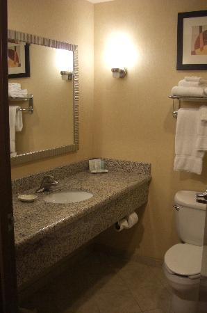 Comfort Suites West of the Ashley: bath