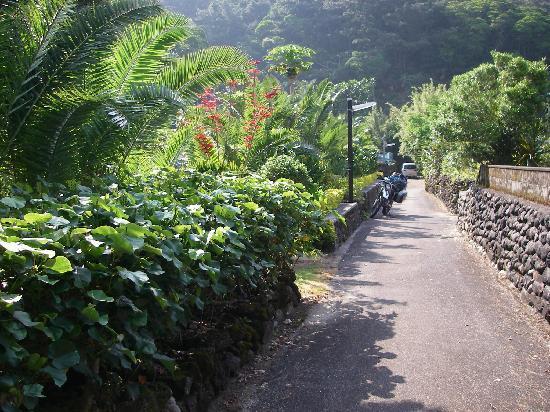 Kakeroma Island: 渡連集落