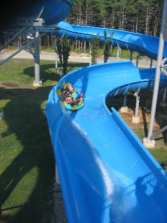 Great Slides Picture Of Calypso Water Park Ontario