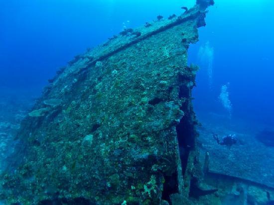Tranquillity Island Resort & Dive Base: Mv Belama Shipwreck on Tranquility Island