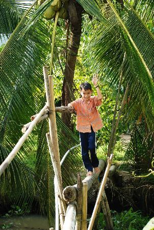 Mekong Delta, Vietnam: Monkey bridge