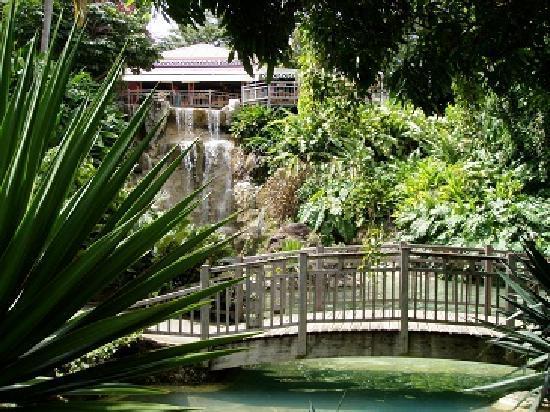 Gîtes Mangoplaya : jardin botanique