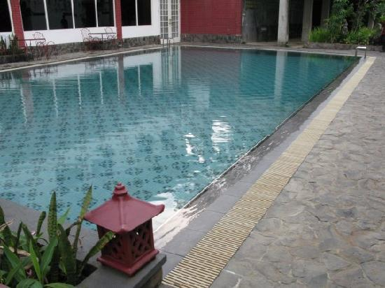 Sempur Park Hotel: swimming pool