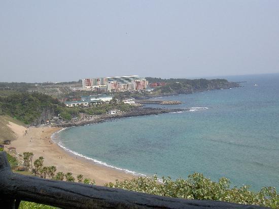 The Shilla Jeju: 庭からの海