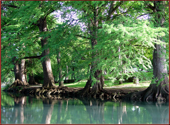 Olympic Outdoor Center: San Marcos River