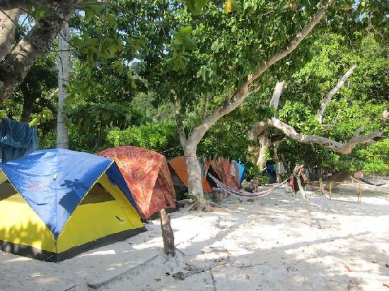 Mu Ko Surin National Park: beach front tents