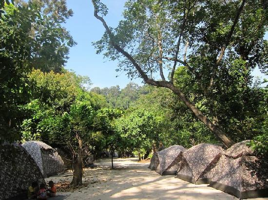Mu Ko Surin National Park: more tents along the path