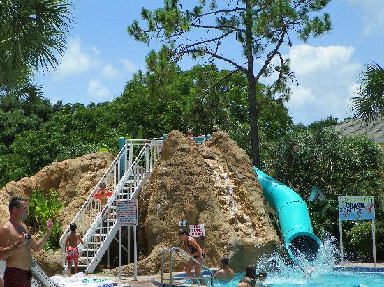 Sheraton Vistana Resort - Lake Buena Vista : Waterslide at the smaller pool!