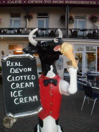 The Downs, Babbacombe: Yummy icecream