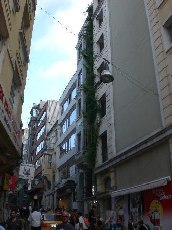 Triada Hotel: Il Palazzo dell'Hotel è quello dove si vede tutto il verde della pianta rampicante sulla destra