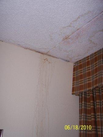 Davenport, IA: water damage in room