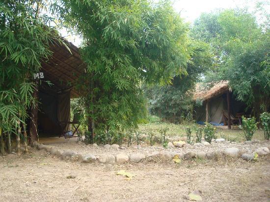 The Jungle Brook Camp Resort Corbett