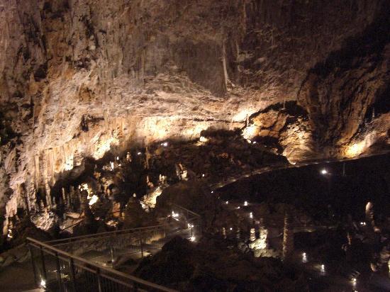 Grotta Gigante : Blick nach vorne