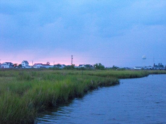 Tangier Island, VA: Island view