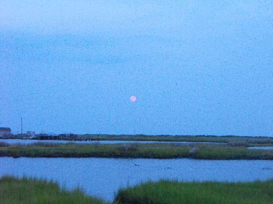 Tangier Island: Touch the moon