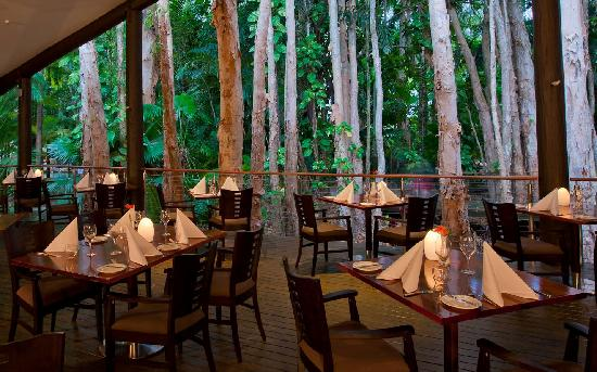 Kewarra Beach Resort & Spa: Forest Dining at Kewarra Beach Resort