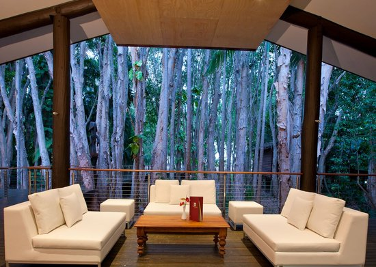 Kewarra Beach Resort & Spa: Paperbark Bar and Lounge