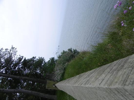Lake Erie: July,10th 2010 003