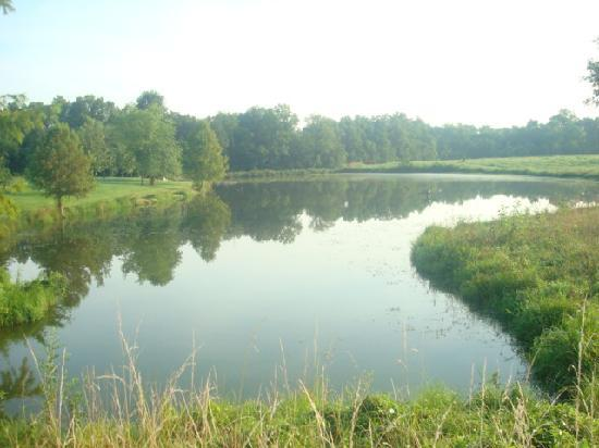 Washington, MO: small fishing pond