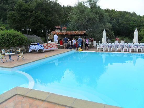 Agriturismo Azienda Agricola il Pozzo: Pool Area