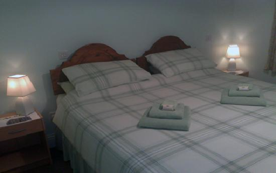 Albion Guest House: Double Room