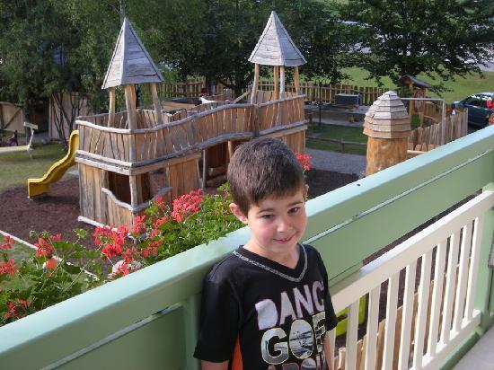 Alpino Family Hotel: visione del parco dell'hotel dalla stanza