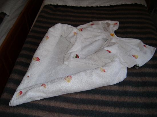 Green Peace Hotel : The lovely heart made with towels and petals by the maid