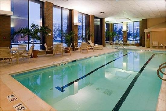 Holiday Inn Cincinnati Airport: Indoor Pool