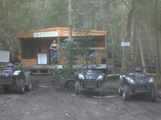 Hermanus Forest Adventures: Their office in the Forest