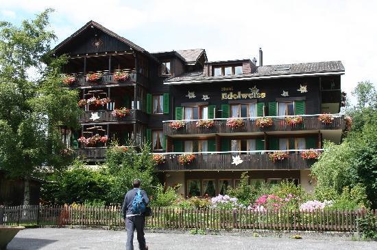 Wengen, Switzerland: Hotel Edelweiss