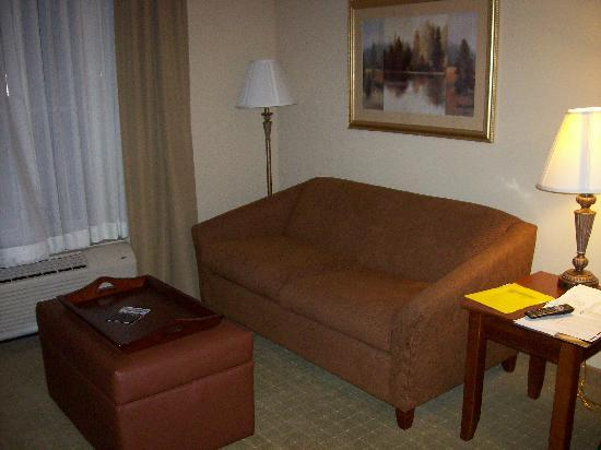 Homewood Suites Rochester - Victor: Living Room