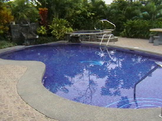 Hotel Vista del Cerro: que gran piscina...