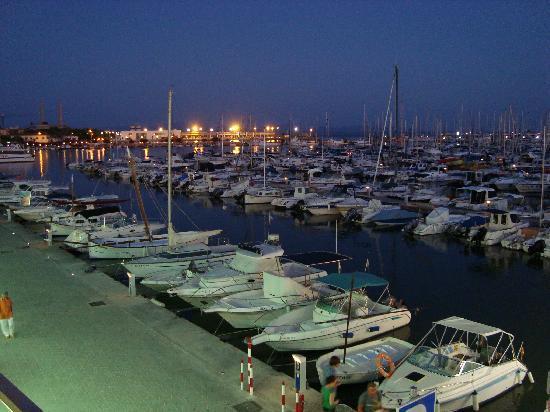 Port dAlcudia Picture of Mariner Club Port dAlcudia  : port d alcudia from www.tripadvisor.co.uk size 550 x 412 jpeg 42kB