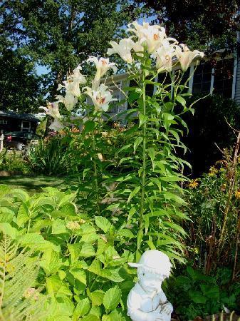 Garden Gate Get-A-Way Bed & Breakfast: Flower Gardens at Garden Gate Get-A-Way B&B