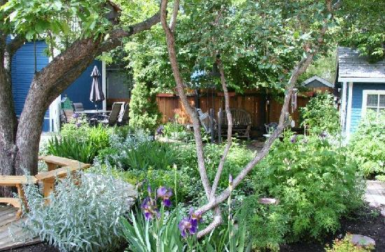 River Wynde Executive Bed and Breakfast: Enjoy our backyard oasis