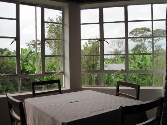 Marangu Hotel: View from the restaurant.