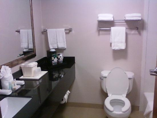 Quality Inn & Suites: Spacious Bathroom