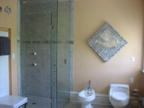 My Mother's Country Inn: Walk-in glass shower