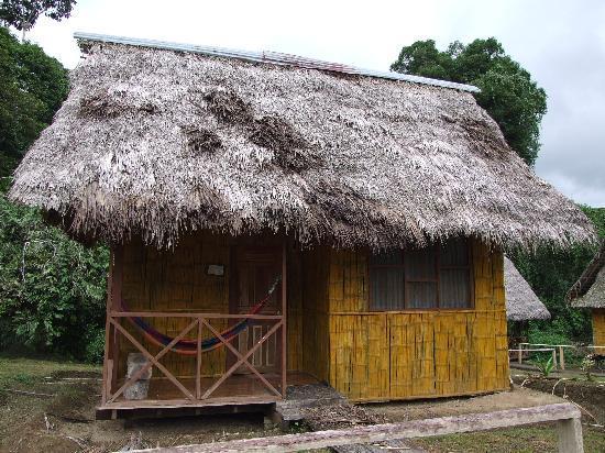 Yasuni National Park, Ecuador: Our cabin