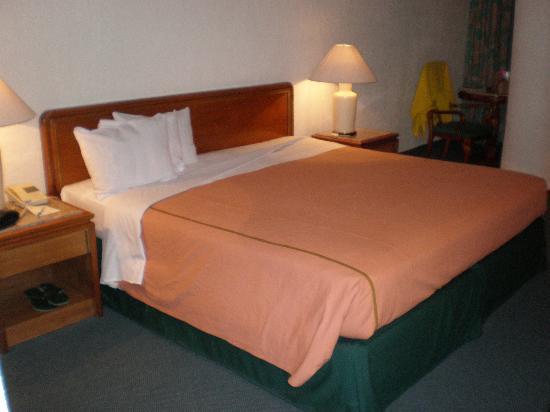 Hotel El Diplomatico : room