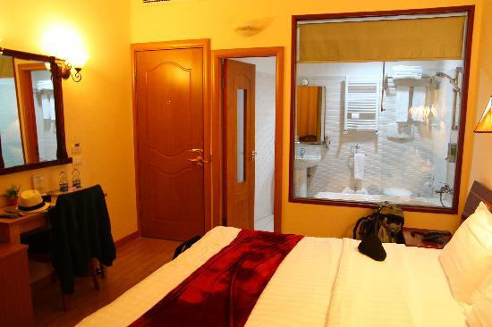 Hotel Filippo Roma: Overview of entire room