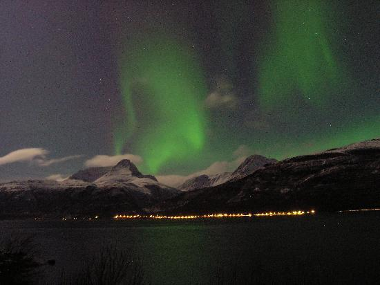 Welcome Inn Hotel Lyngskroa: Northern Lights over Steindalen, Lyngen Alps