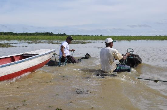 Fazenda Sanjo : Ausflug mit den Wasserbüffeln