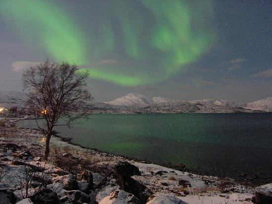 Northern Norway, Norge: Northern Lights in Full Moon!!