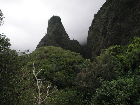 Iao Valley State Monument: イアオニードル