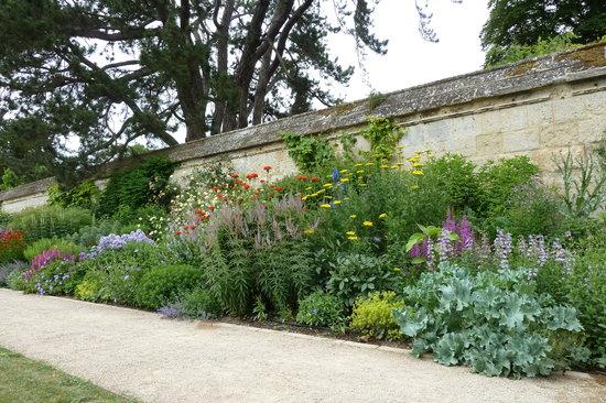 University of Oxford Botanic Garden: gardens