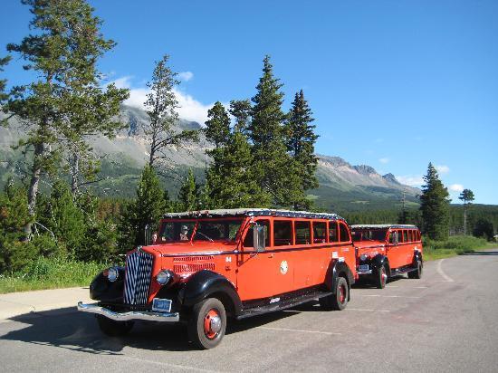 Glacier Park Red Bus Tours Glacier National Park 2018 All You