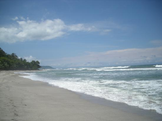 Pranamar Villas and Yoga Retreat: The beach