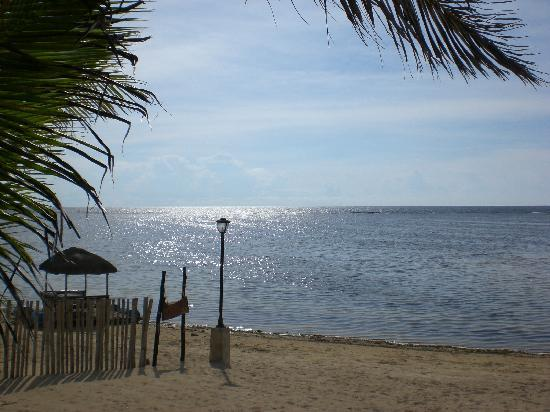 Puerto Del Sol Beach Resort: view from the restaurant patio