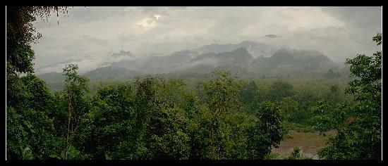 Ban Xieng Lom, Laos: Morning view of the jungle mist in early Morning, bungalow balcony